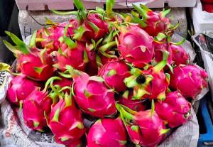 Pittaya Fruit